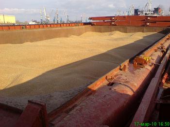 معطلی یک ماهه 5 کشتی حامل گندم در بنادر ایران